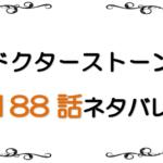 最新ネタバレ『Dr.STONE(ドクターストーン)』188-189話!考察!衝撃!バトルチーム全滅!!司・氷月・コハクが死亡!?